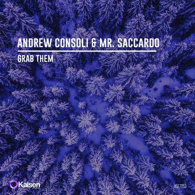 KSE7053_Andrew_Consoli_Mr.Saccardo_Grab_Them_3000x3000